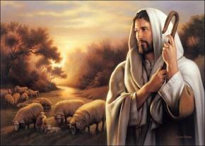 Um só Rebanho e um só Pastor