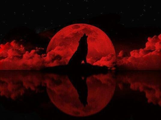 fanfiction-originais-infernal-romance-2650359,261020141814